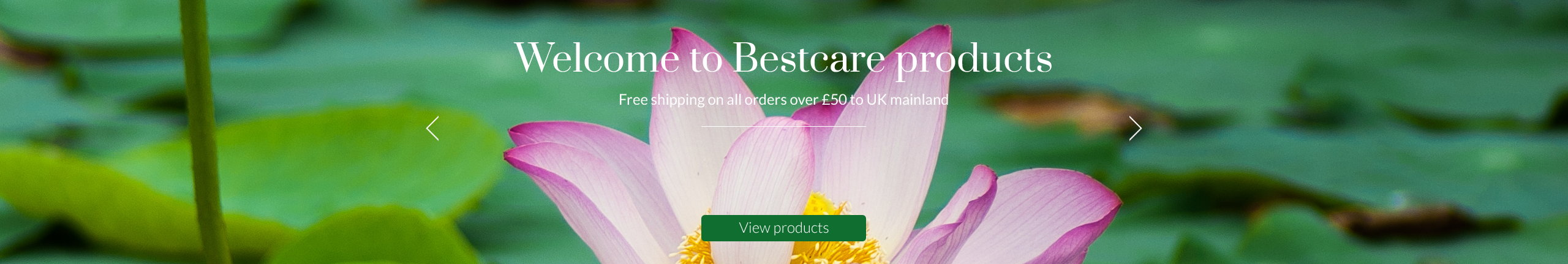Welcome to Bestcare Products
