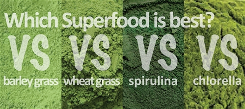 Which superfood in best